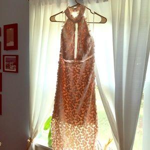 Bardot lace cocktail dress